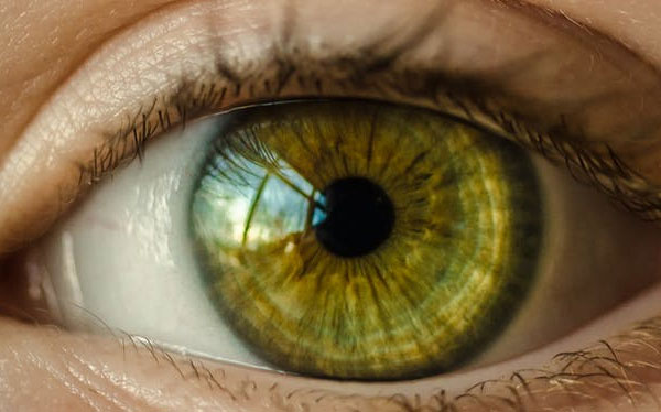 zakrivenie kontaktných šošoviek